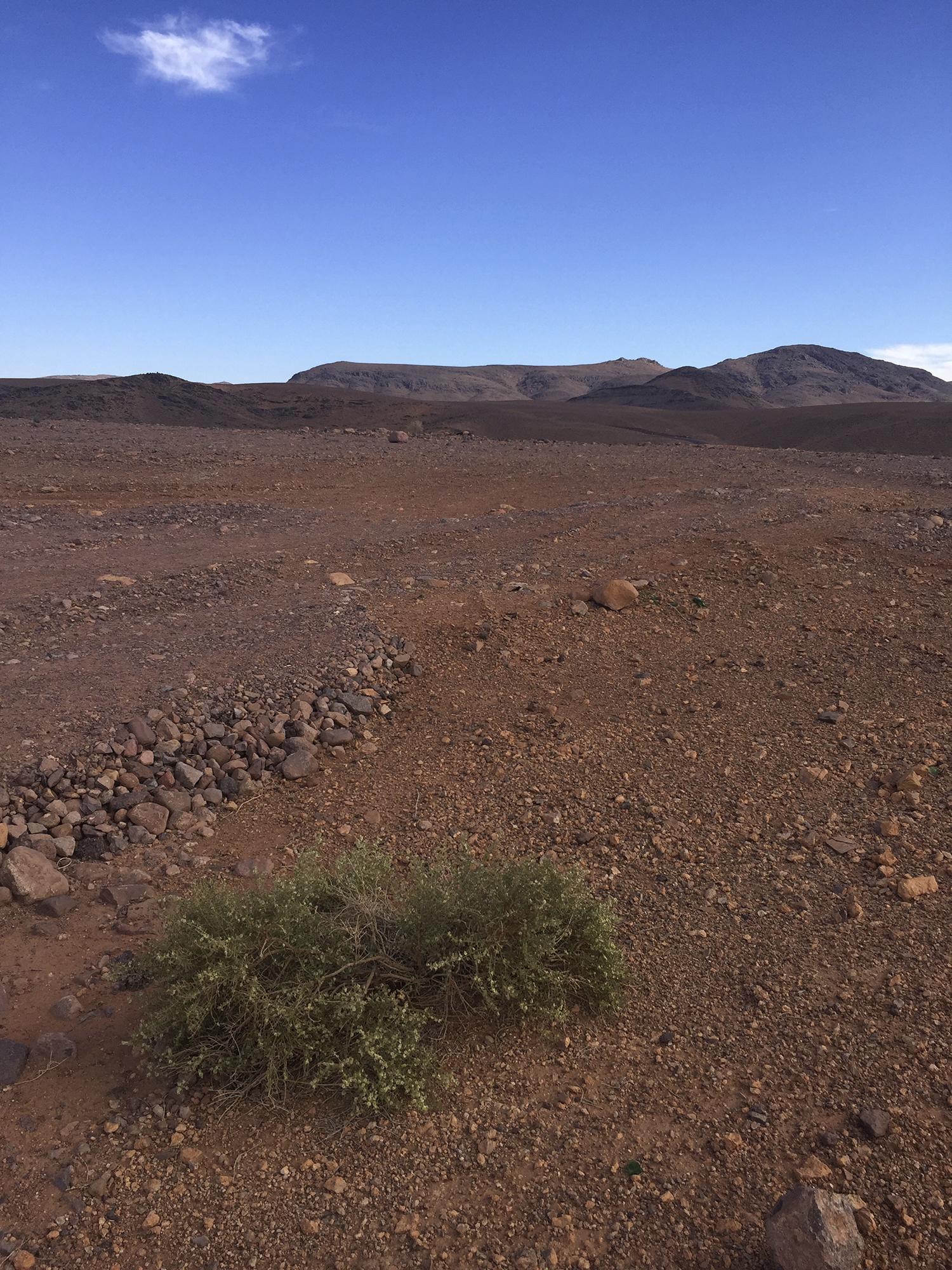 Desert Maroc Ouarzazate