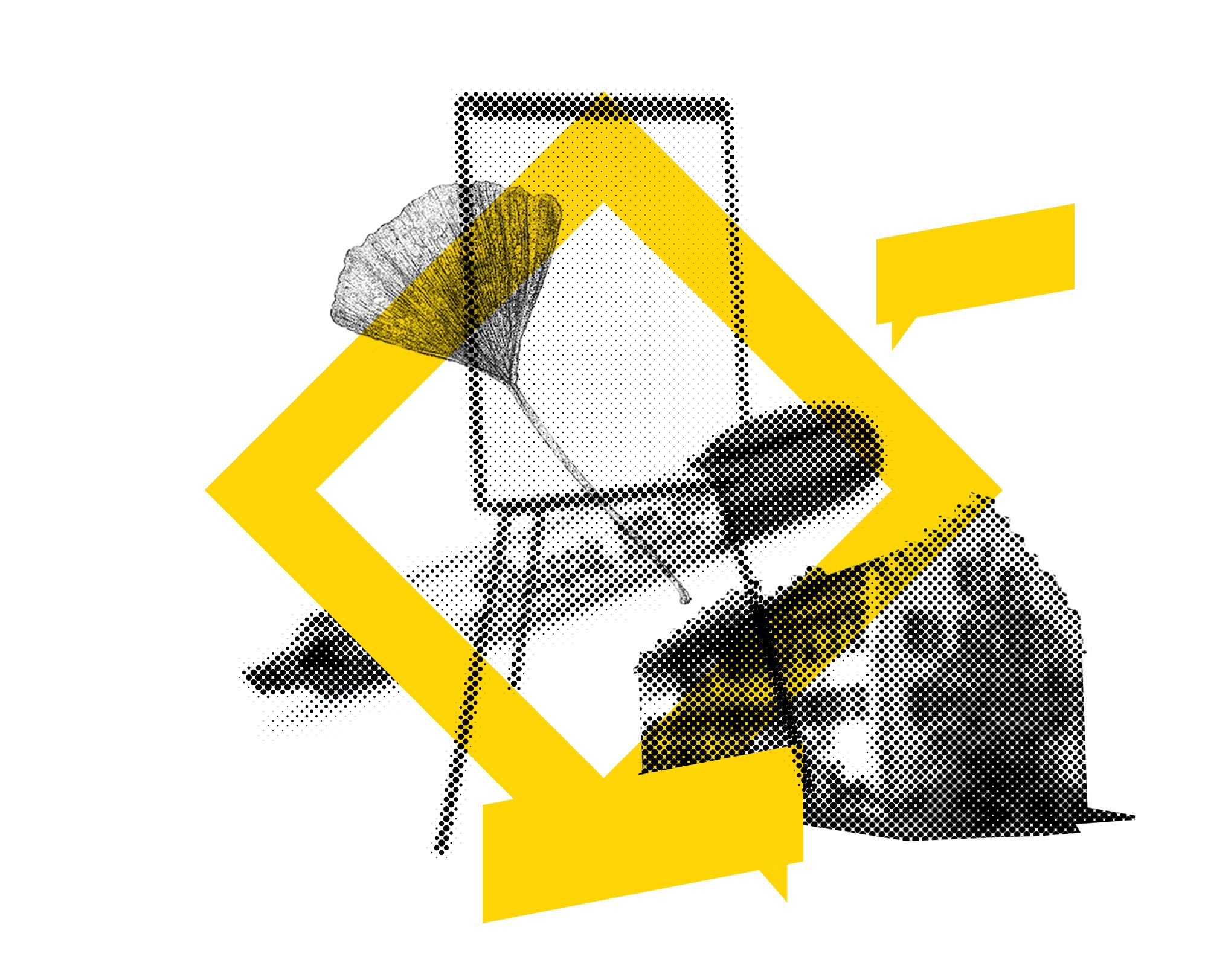 Collage Illustration mit Gingkoblatt Agroscope, Flipchart, Stift und grafischen Elementen zum Thema Workshop