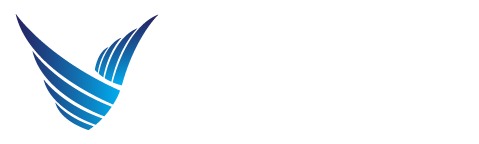 Voler Aviation logo