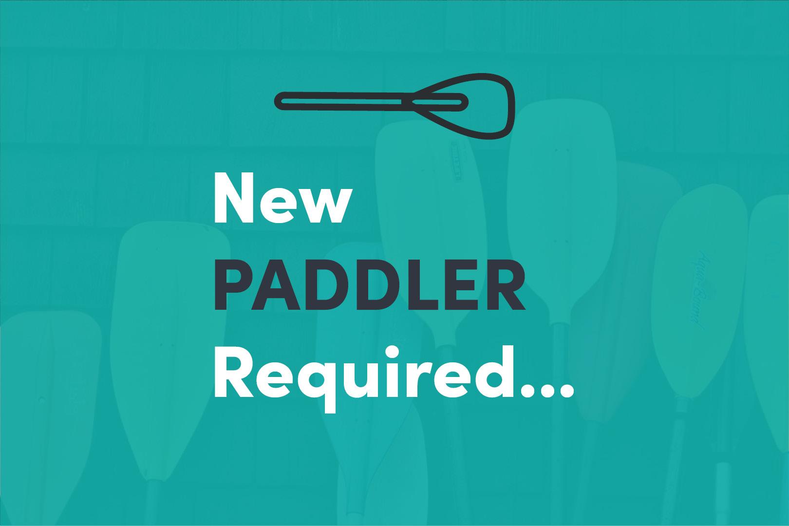 Paddle Creative is Hiring - Marketing Coordinator