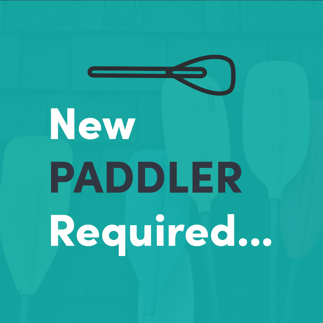 Paddle Creative is Hiring - Marketing Coordinator