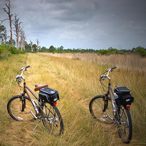 De Sjieper fietsen in Belgisch Limburg