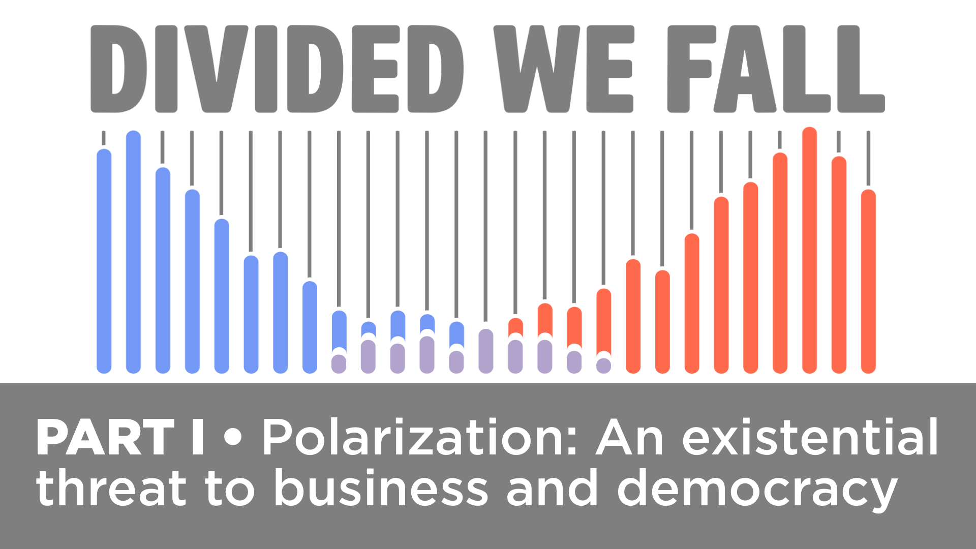 DIVIDED WE FALL: How Business Can Depolarize the US • Part 1