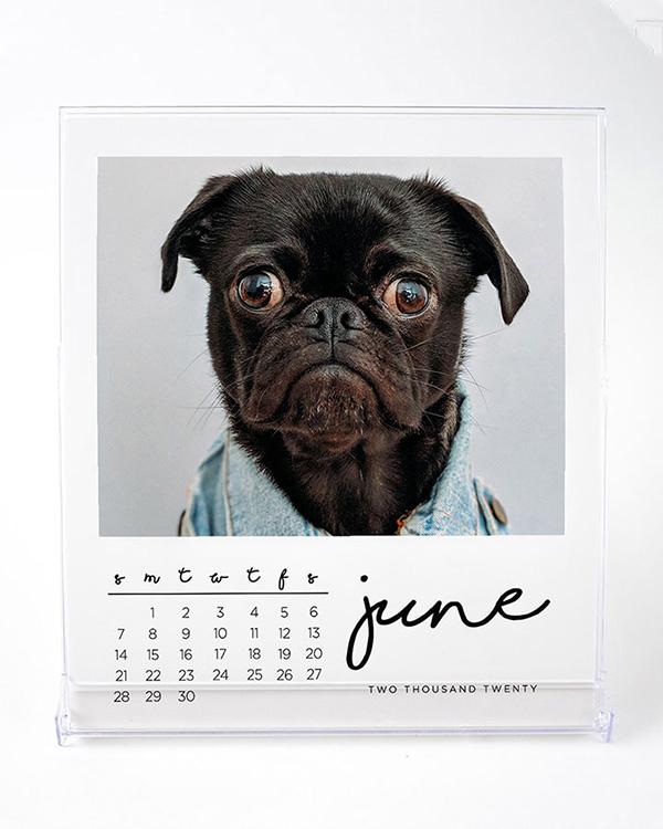Jewel Case 2020 Photo Calendars - Color Services