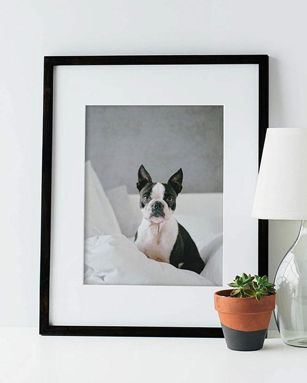 Framed Prints - Color Services