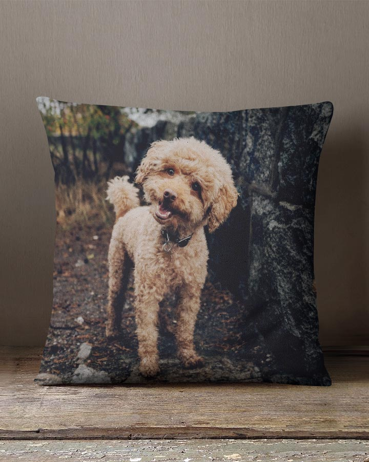 Photo Pillows - Color Services