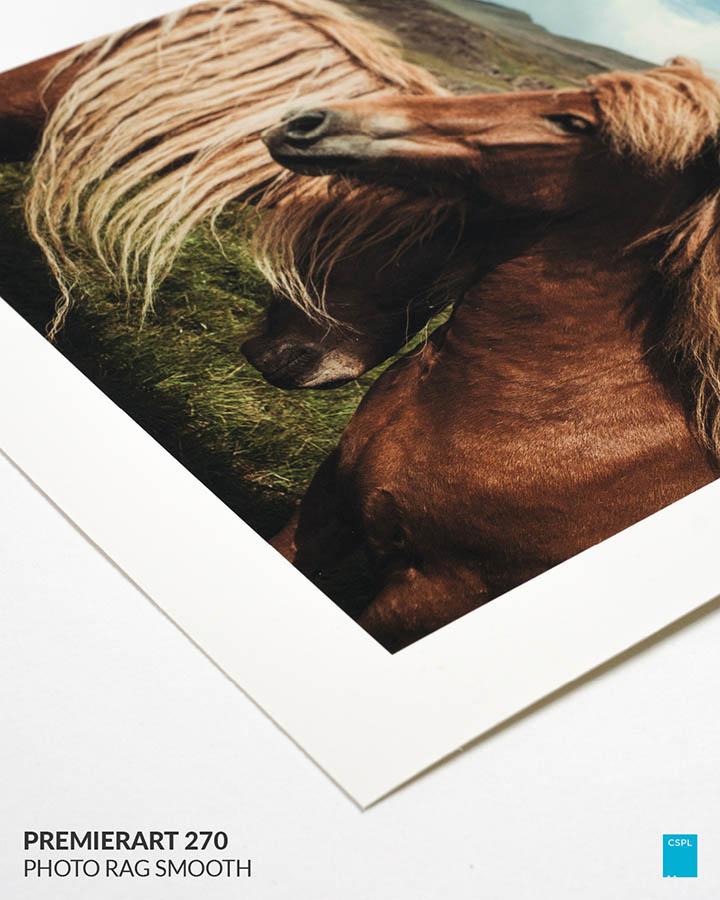Premierart 270 Photo Rag Smooth - Fine Art Prints - Color Services - Santa Barbara