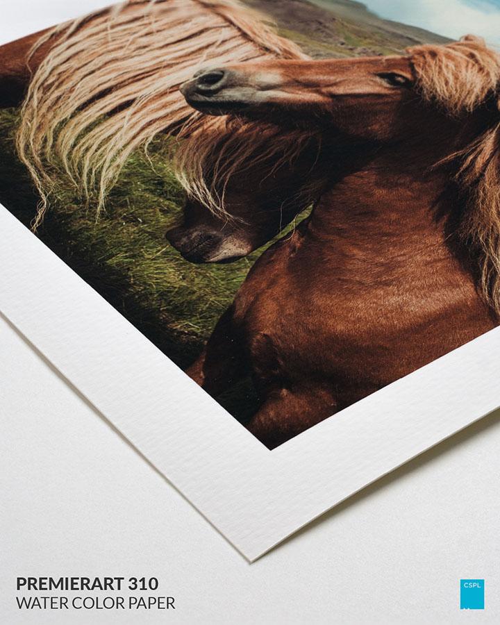 Premierart 310 Water Color Paper - FIne Art Prints - Color Services - Santa Barbara