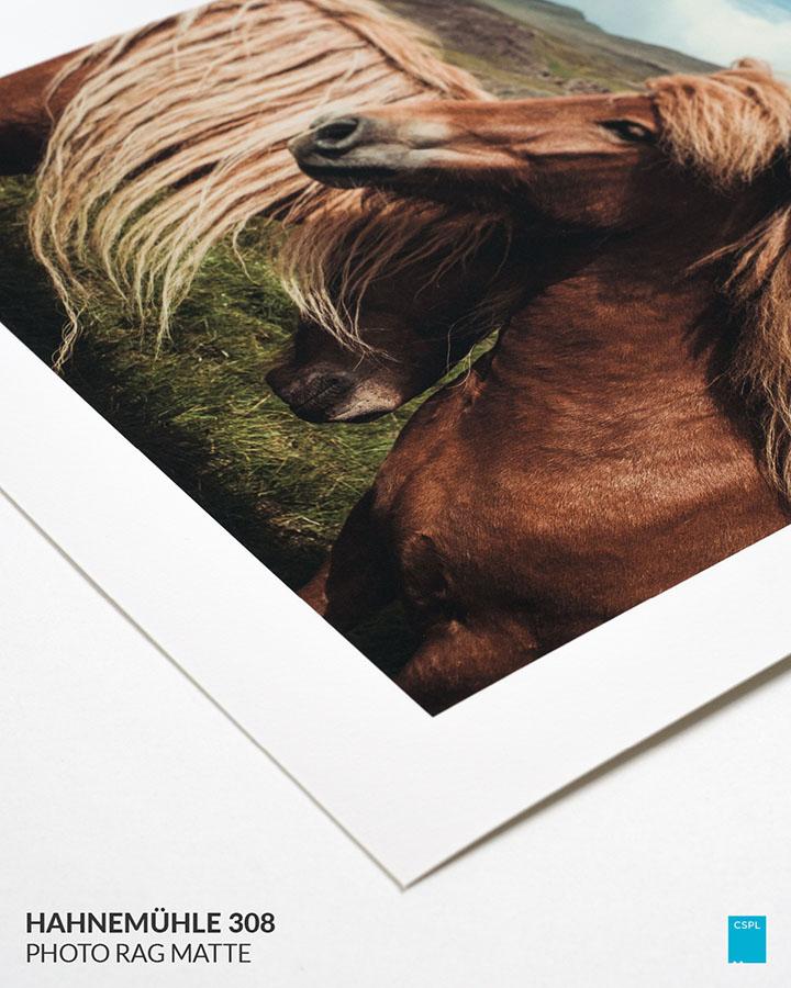 Hahnemühle 308 Photo Rag Matte - Fine Art Prints - Color Services - Santa Barbara