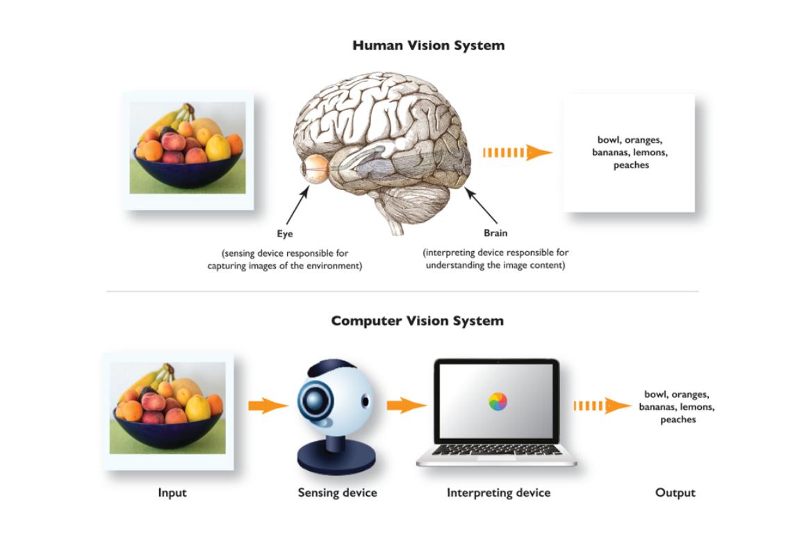 Human Vision System vs. Computer Vision System