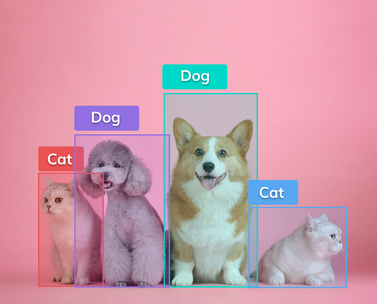 Object detection with V7
