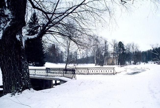 A park full of snow