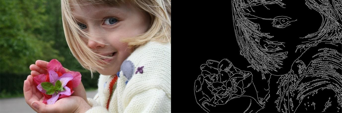 Edge detection applied to a picture of a girl with a pink flower