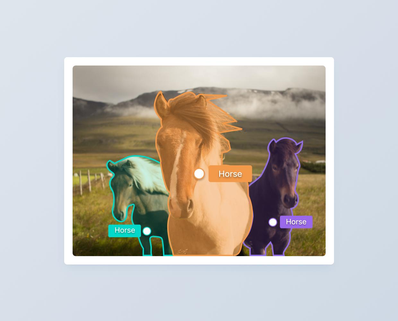 Instance segmentation performed using V7 on horses