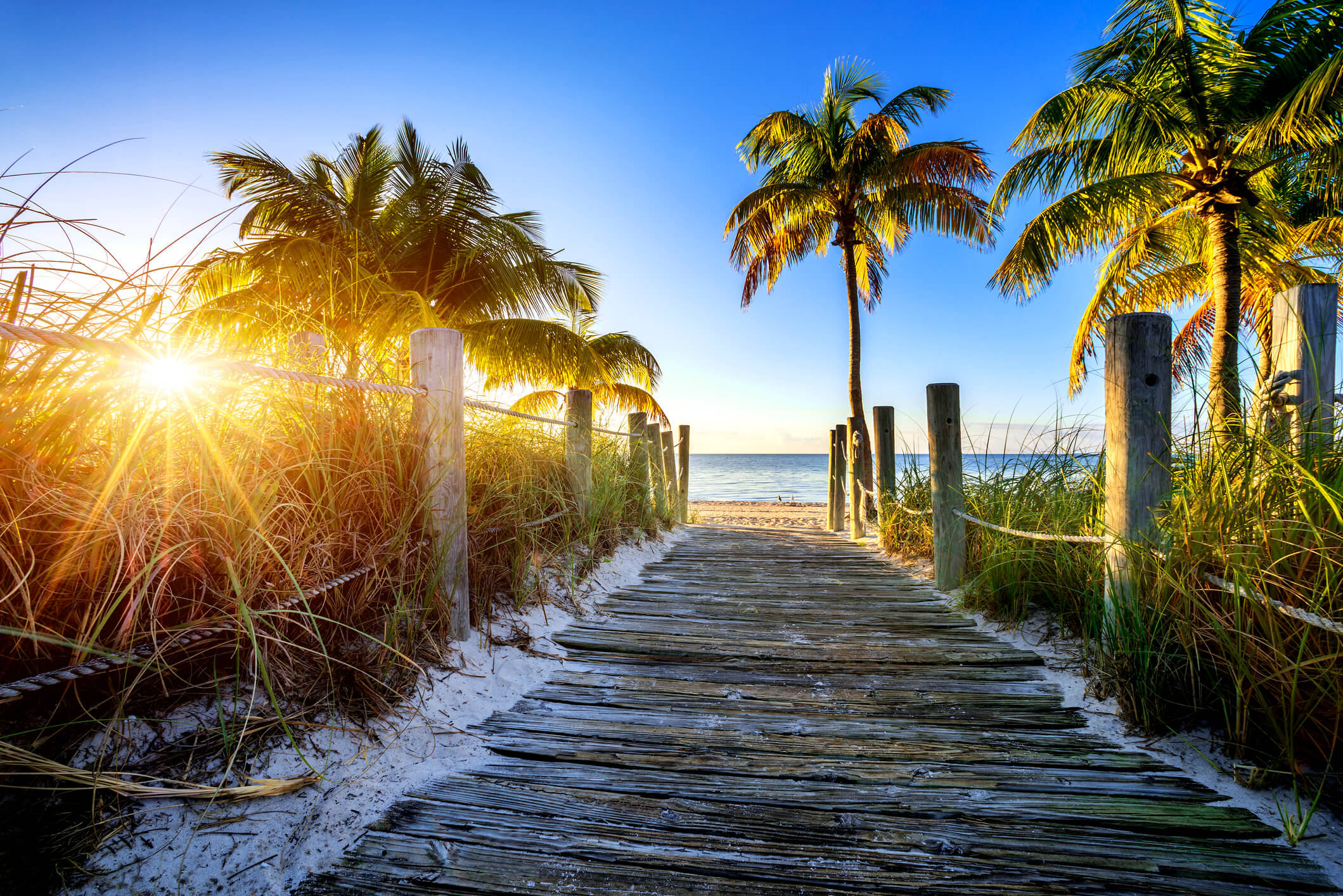 Private Air Charters to Florida