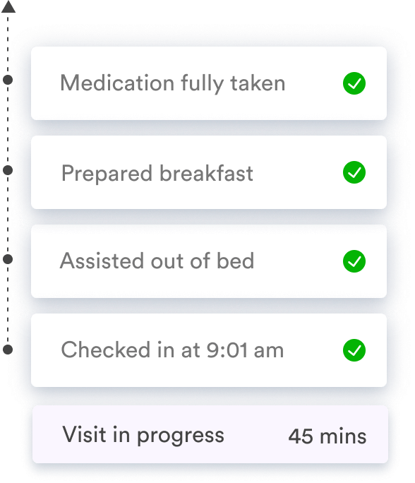 Task planner feature as listed on Birdie, featuring visit progress, medication and daily tasks
