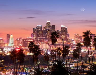 Los Angeles Skyline View