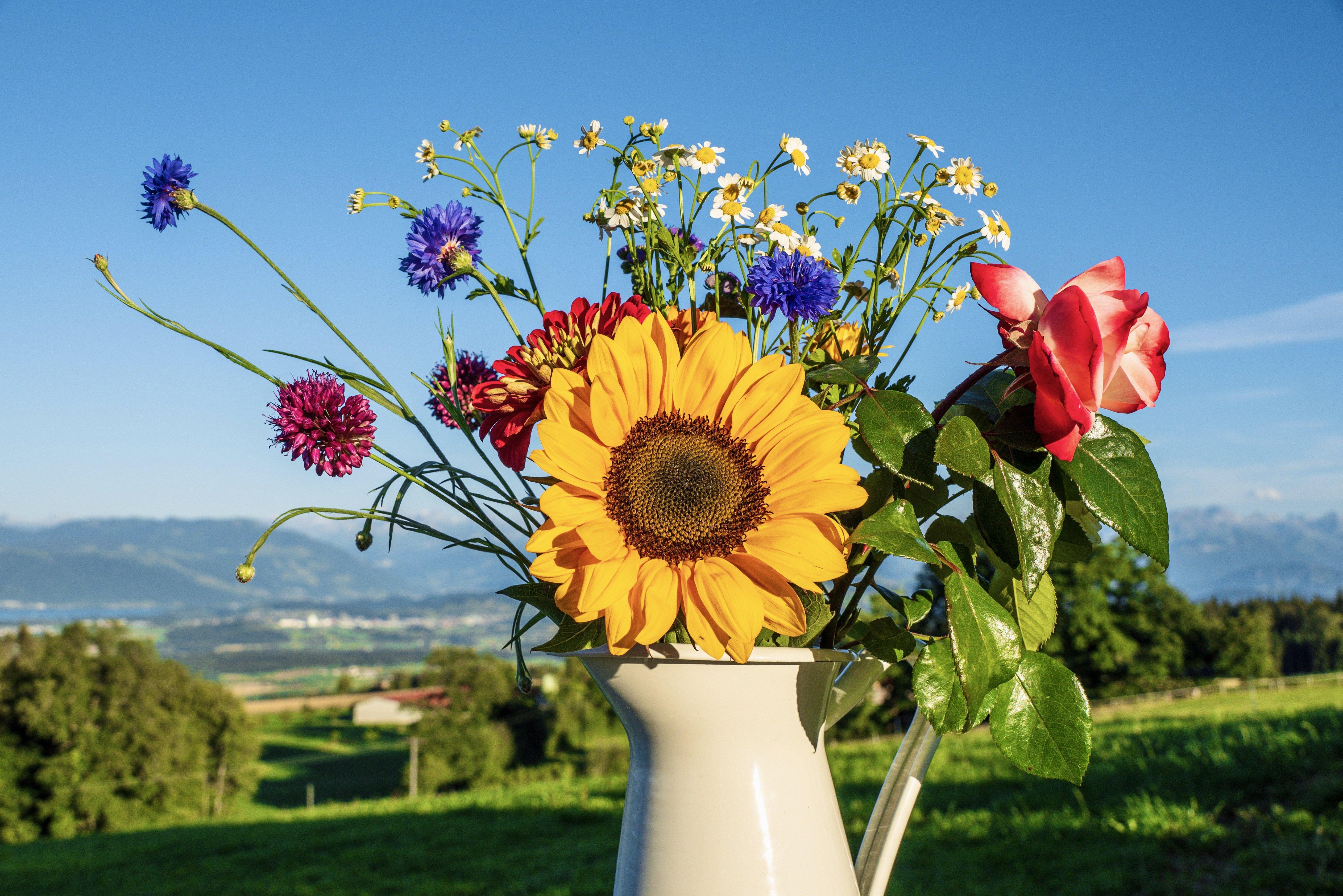 Er du klar for en miljøvennlig sommer?