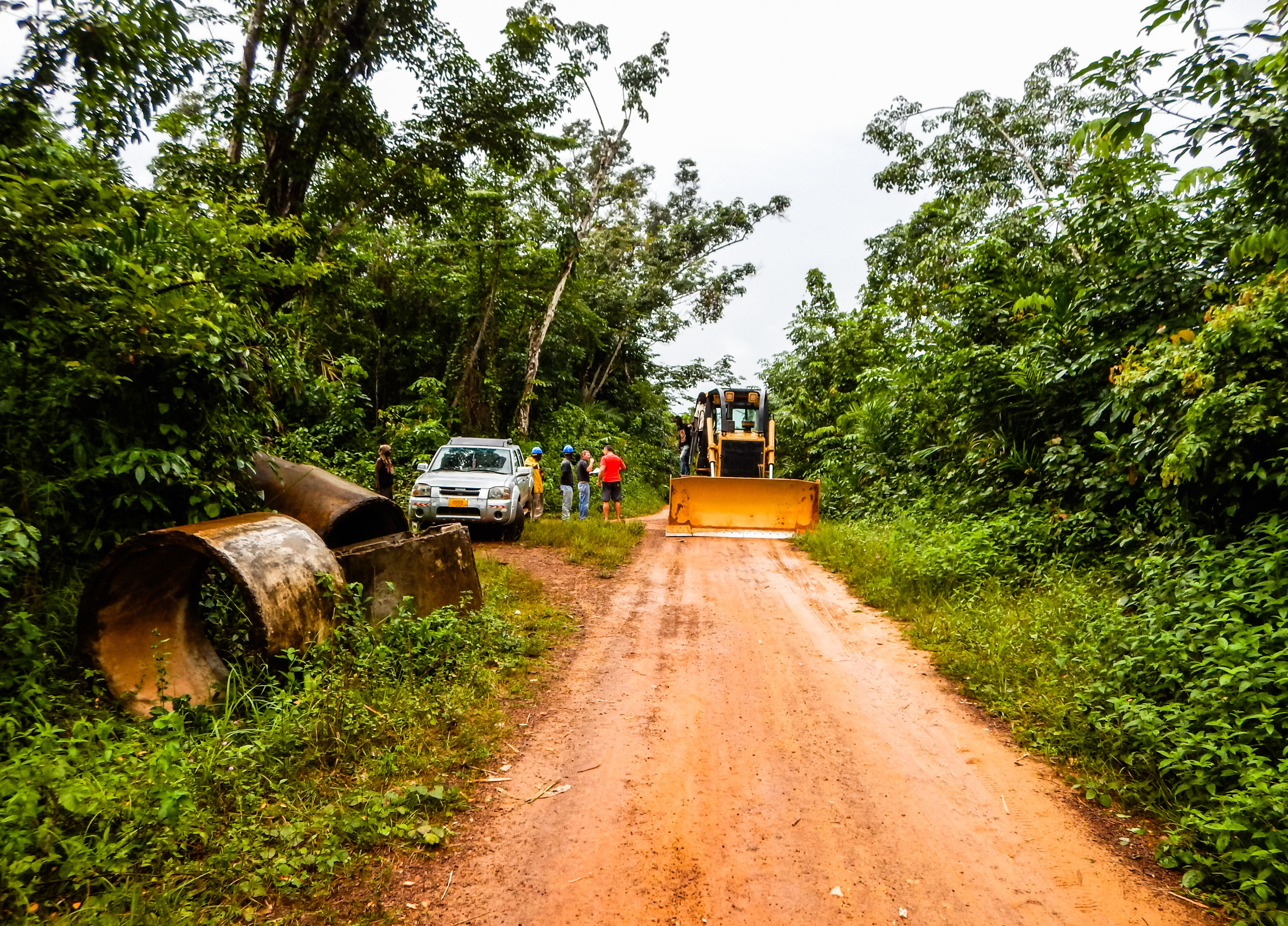 Workers and a bulldozer on a dirt road running through the rainforest
