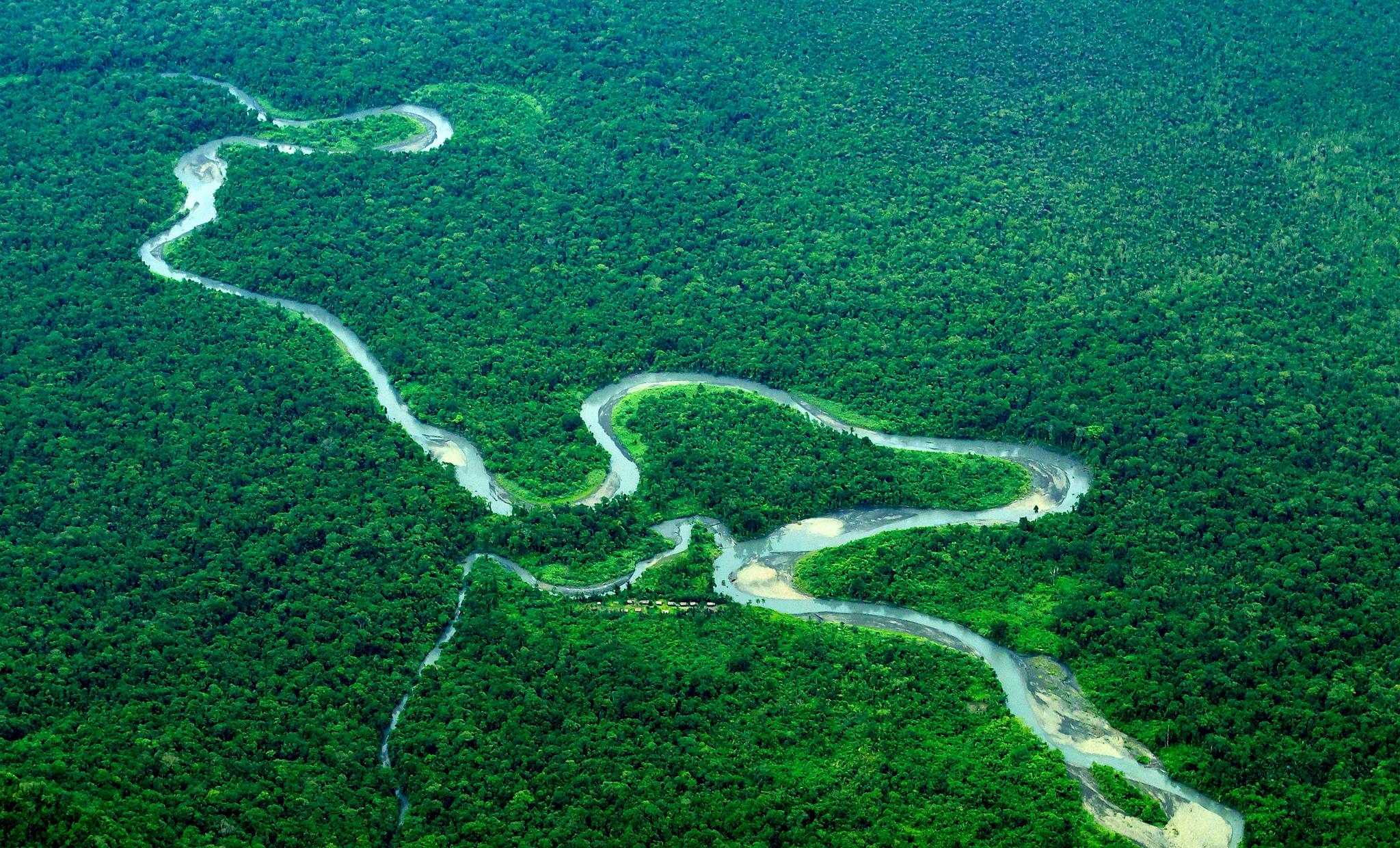 River winding through the rainforest