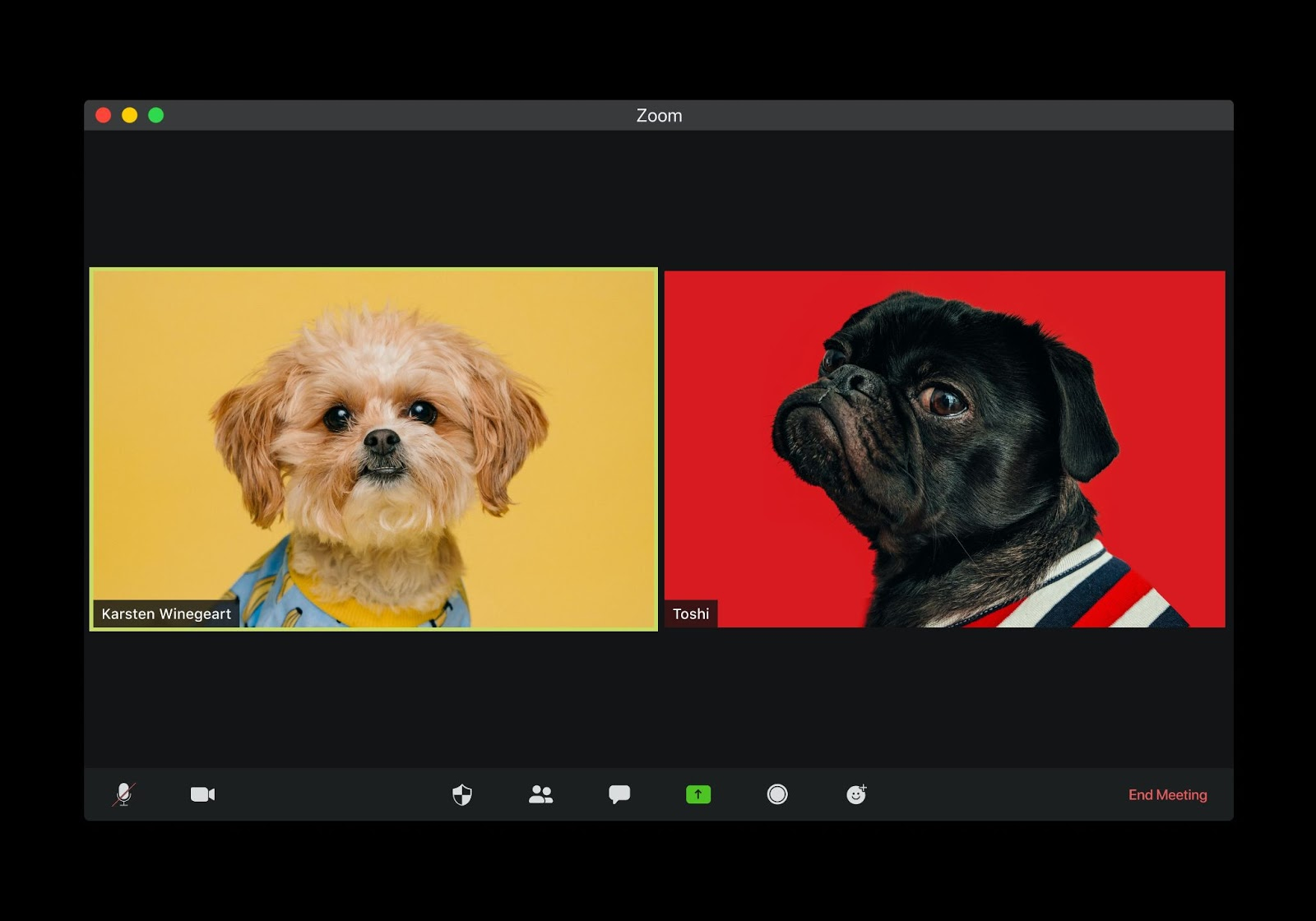 two dogs on a remote work video call