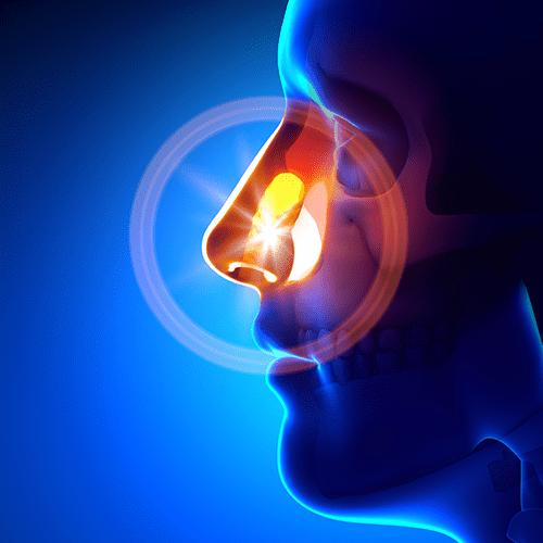 Nose & Sinus Services