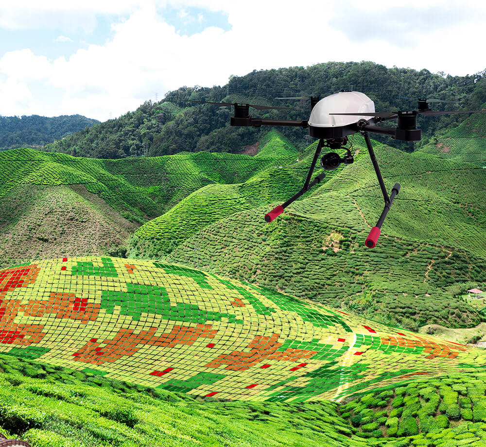 Land Vegetation Analysis Drone Data