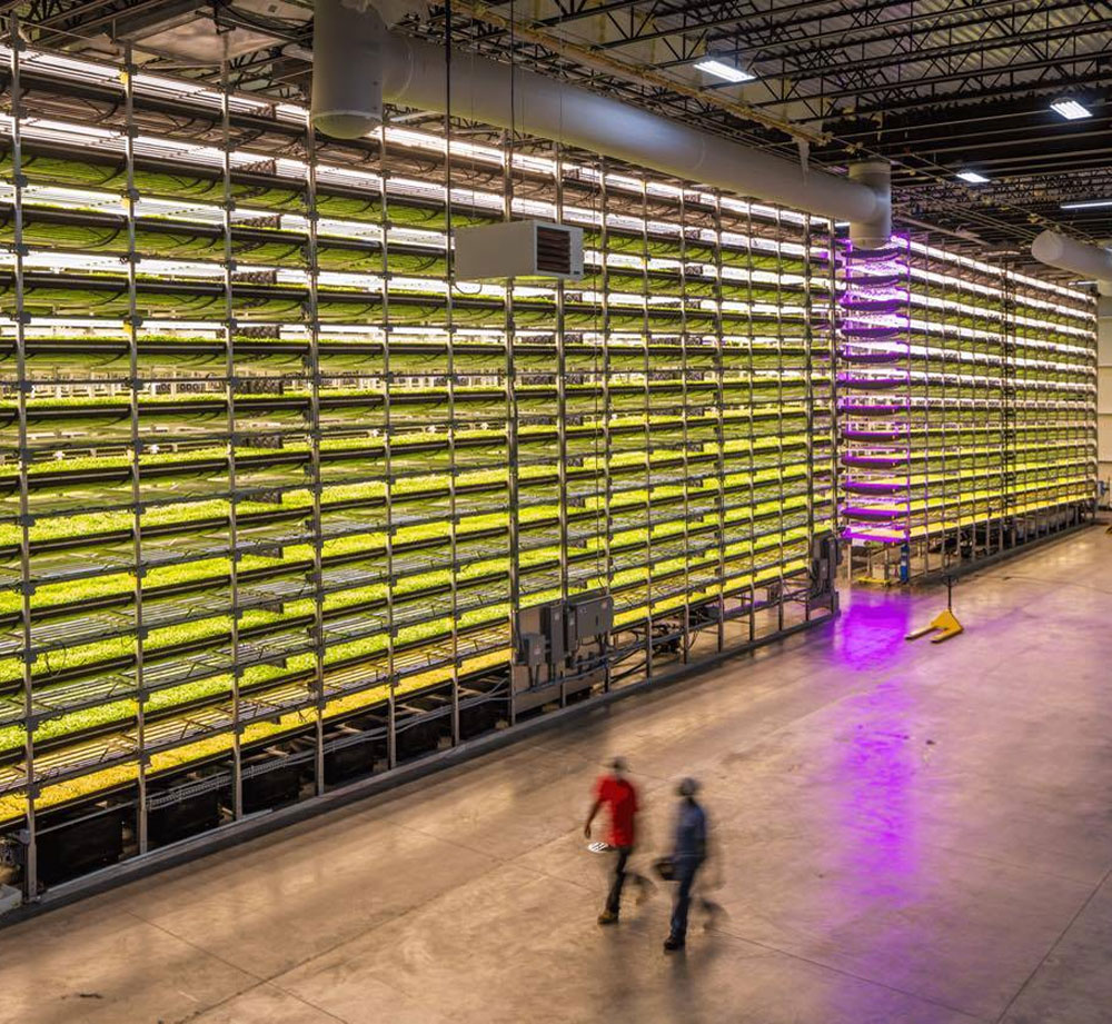 Aerofarm Vertical Farm Facility