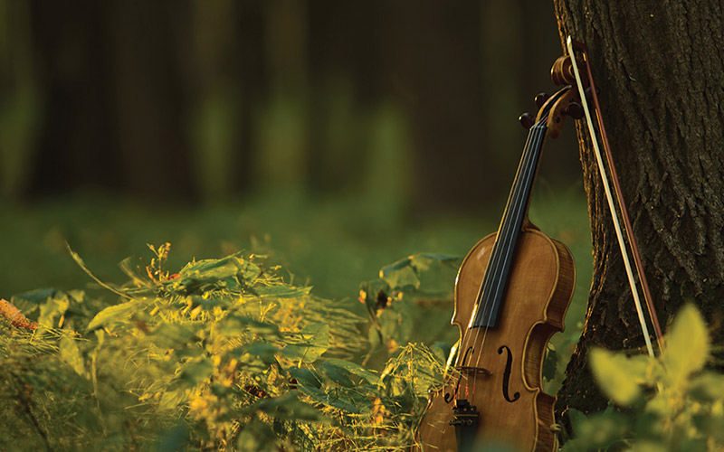 Louisiana Philharmonic Orchestra: Nature's Awakening