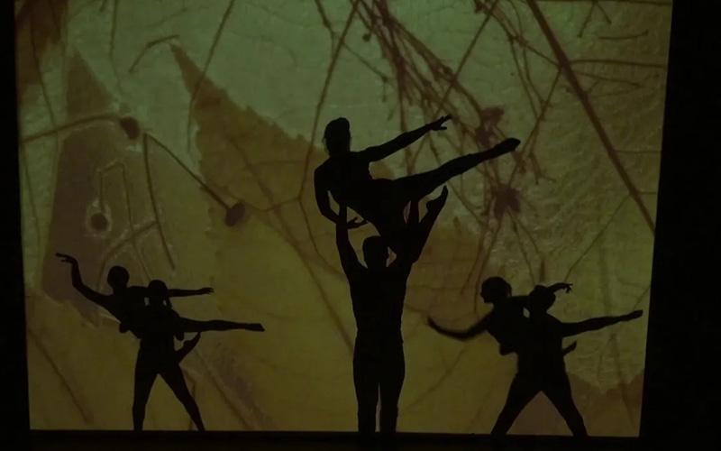 CATAPULT Magic Shadows Episode #1: Four Seasons