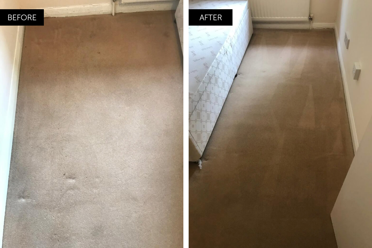 professional carpet cleaning before and after