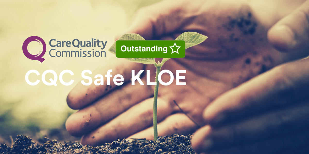 Hand cradles seedling - title: How to achieve Outstanding in the CQC Safe KLOE