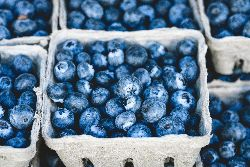 Blueberries are excellent source of antioxidants and are a tasty way of increasing your daily fruit intake