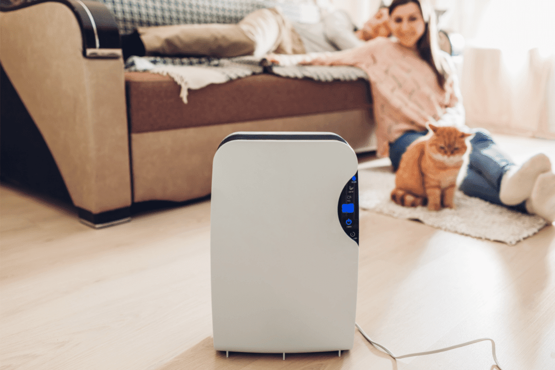 humidifier in focus woman with cat sitting on floor of living room in the background
