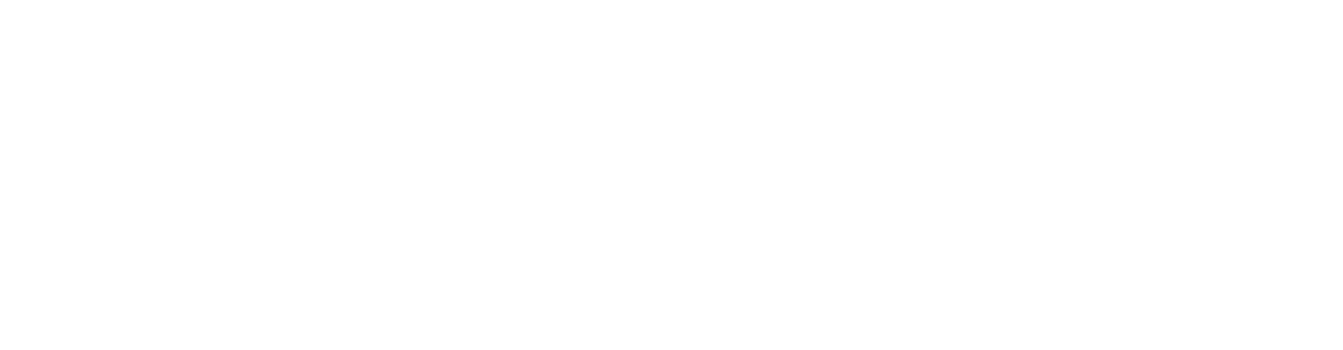 AirTM Logo White Transparent