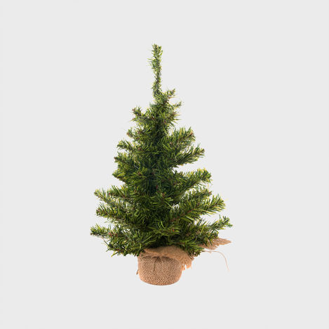 3 Ways We're Disrupting the Christmas Tree Industry