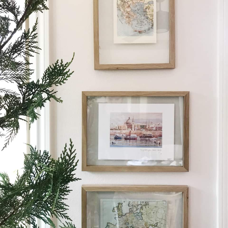 The Leyland Cypress is our tree of choice in Oklahoma. The true green, soft, touchable foliage makes it a beautiful choice for Christmas, even if it's not quite traditional. We loved this shot from the home of one of clients at Christmas 2018.