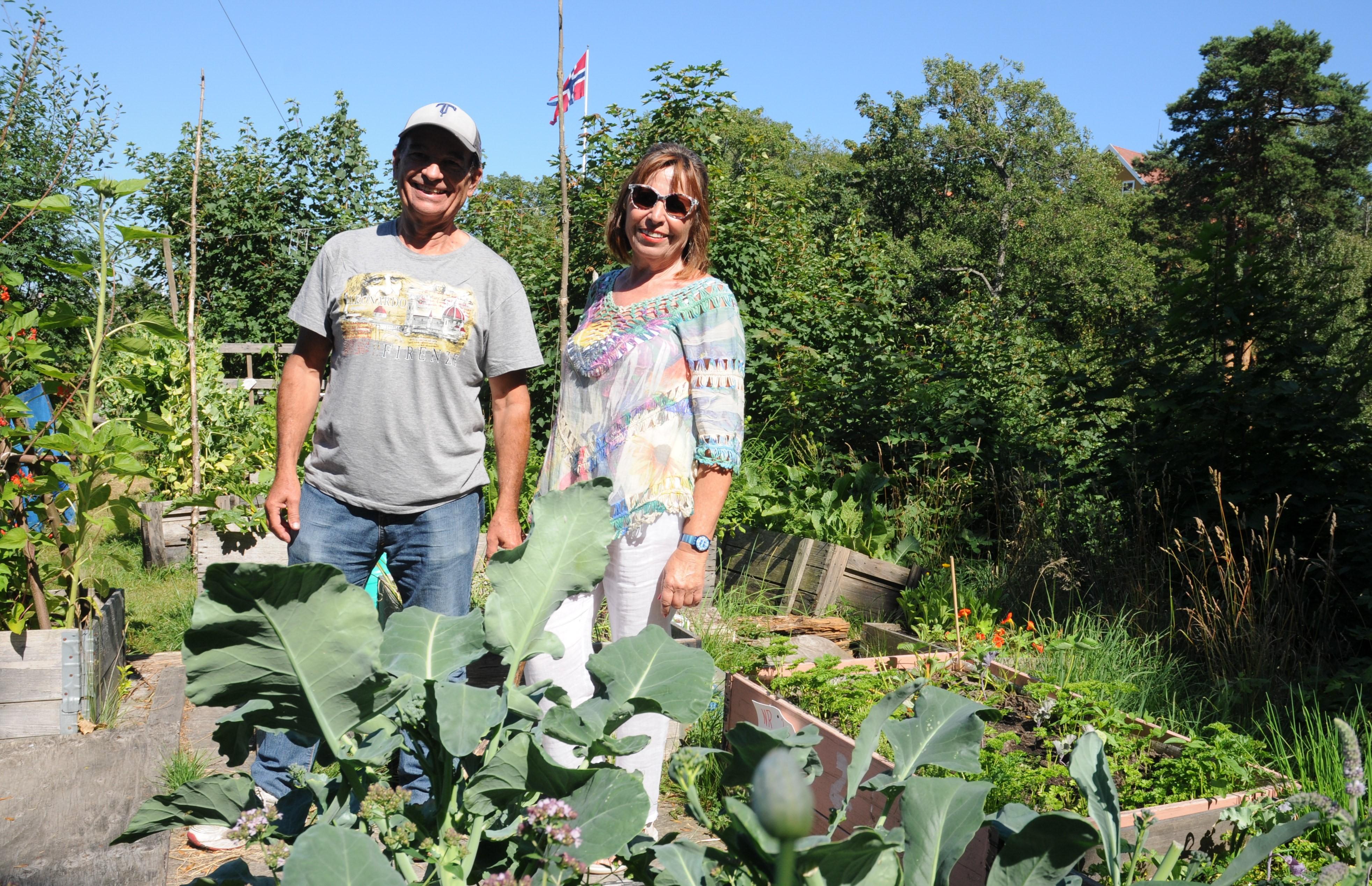 Så- og plantekurs for bybønder og balkongdyrkere