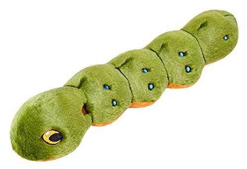 A green caterpillar dog toy.