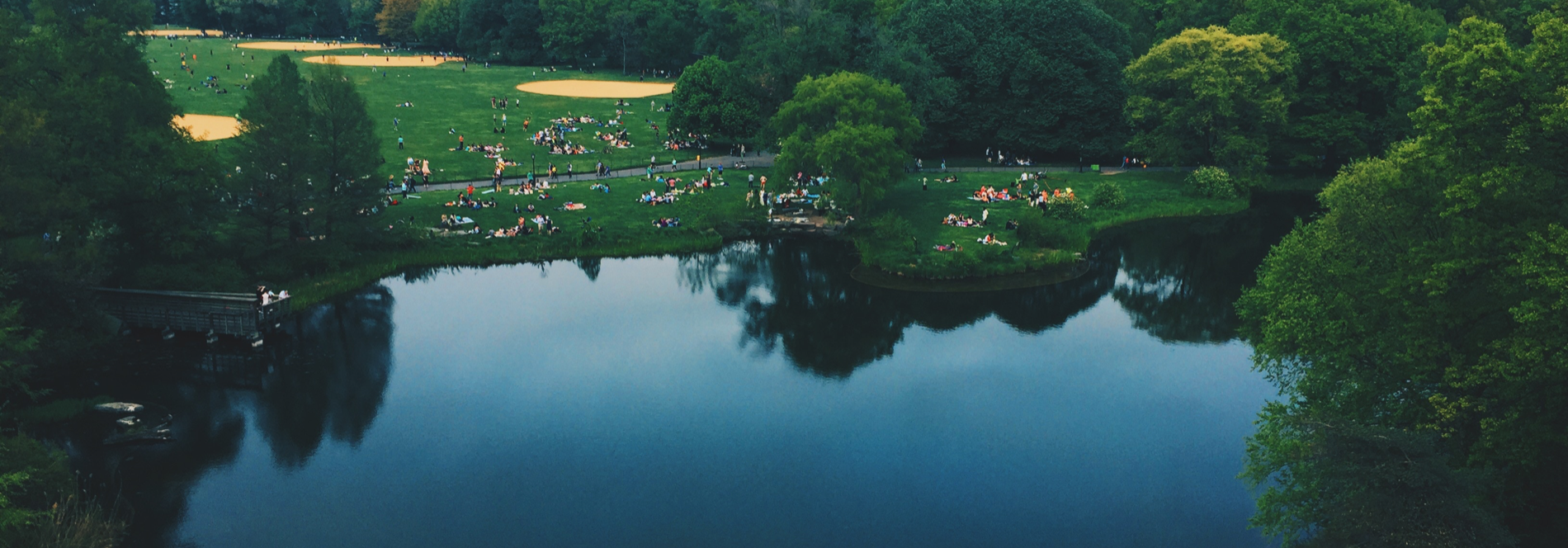 An aerial view of urban park featuring a skyline, lake and many people picnicking