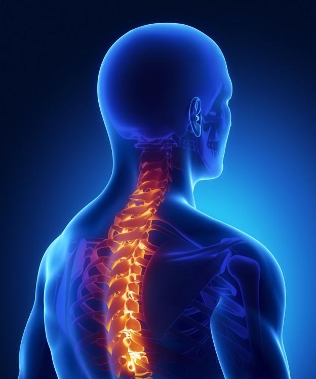 Non-Surgical Spine Interventions Steward