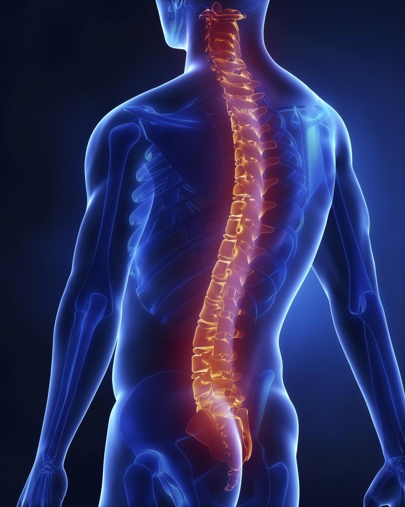 Surgical Spine Interventions Steward