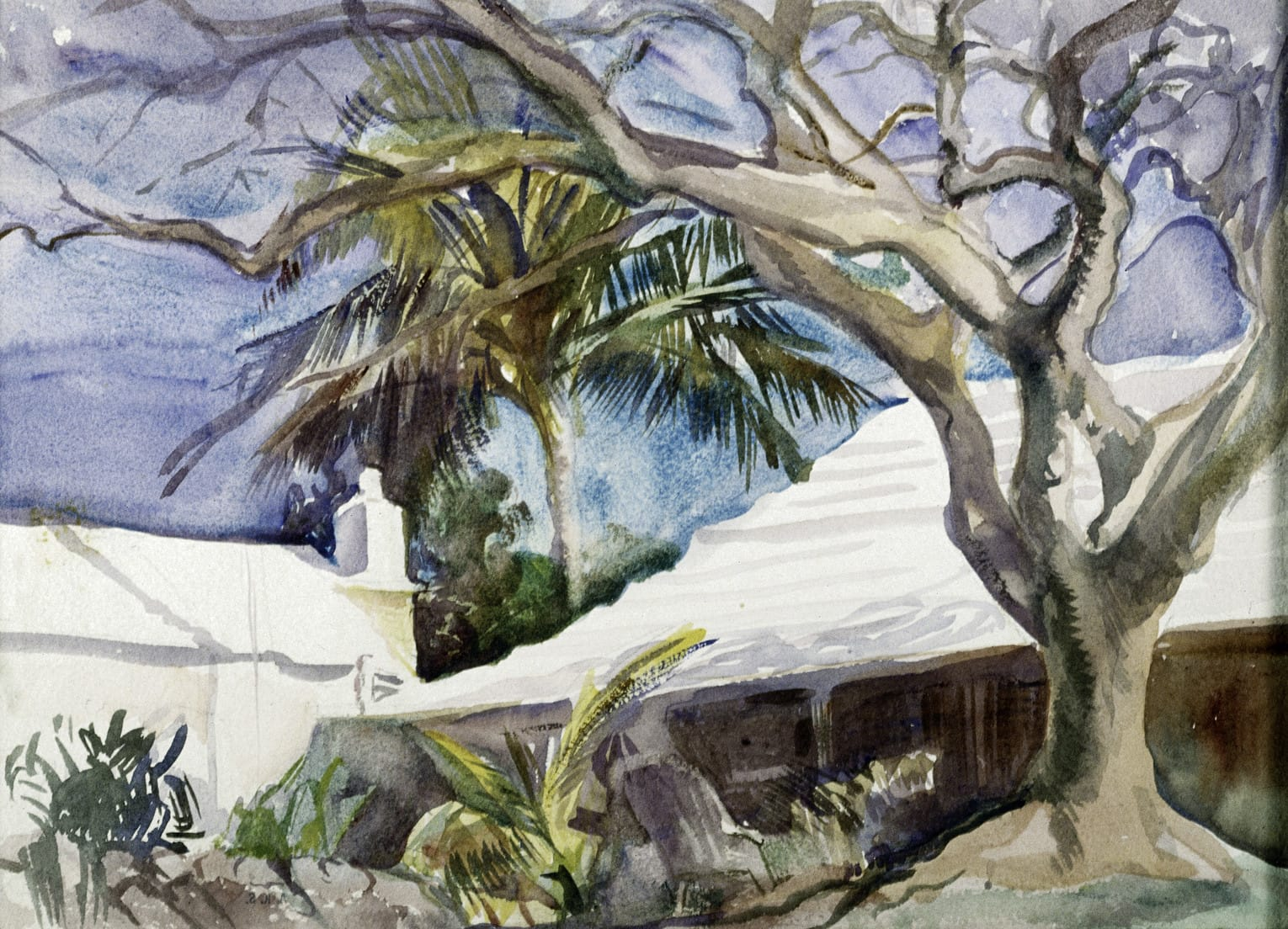 Painting of Trees by Seaside