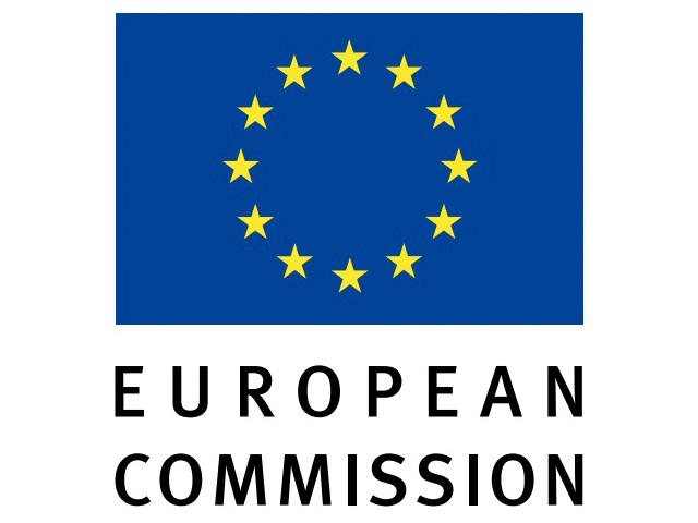 Team Leader for Smart Grids, European Commission