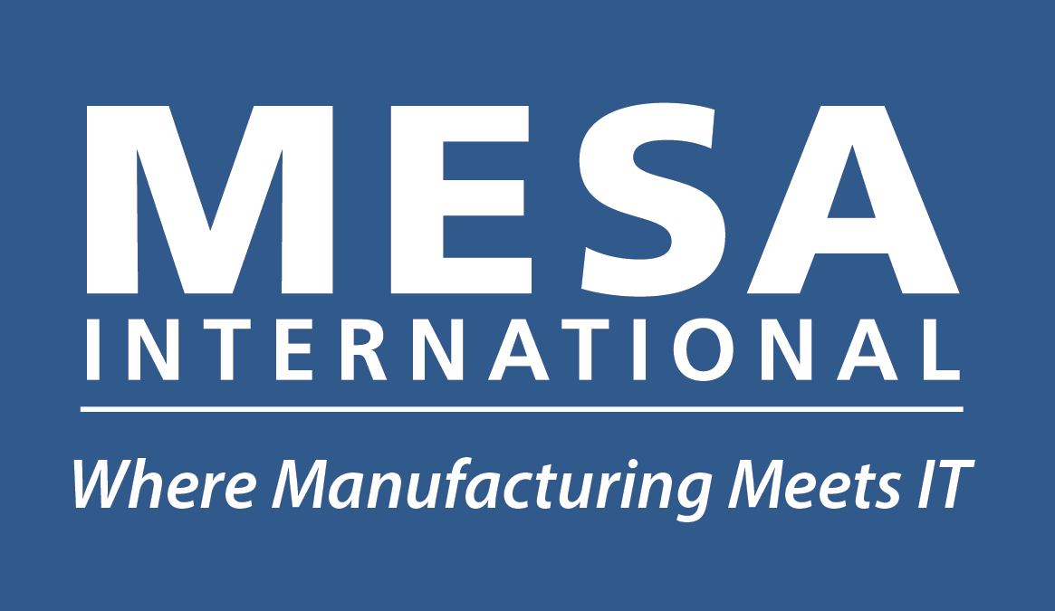 Chairman of EMEA Board, MESA International