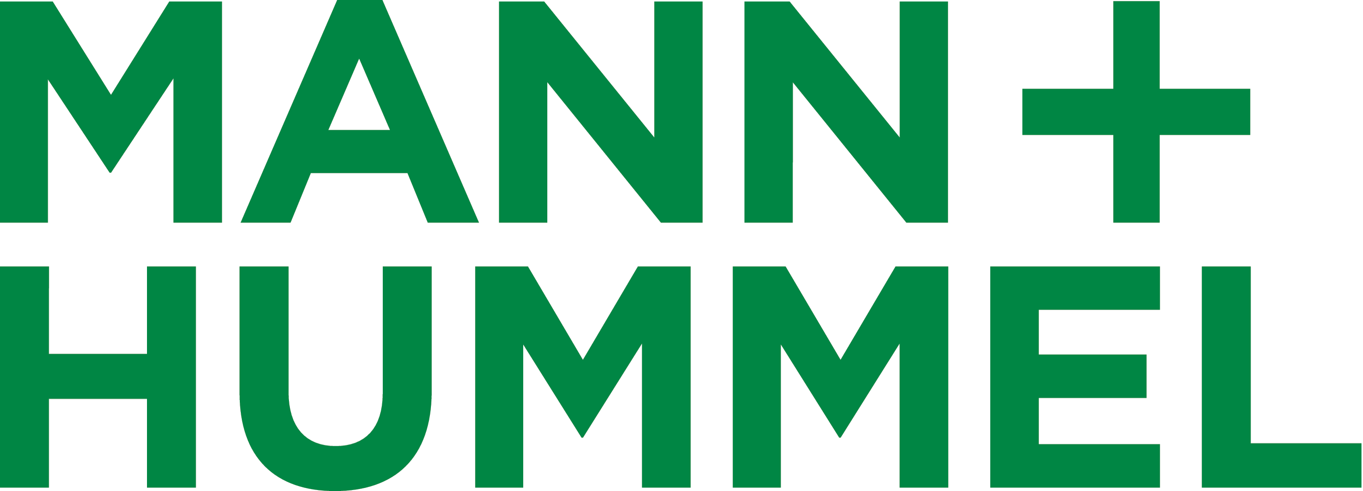 Director, Strategy & Automotive Aftermarket, MANN + Hummel