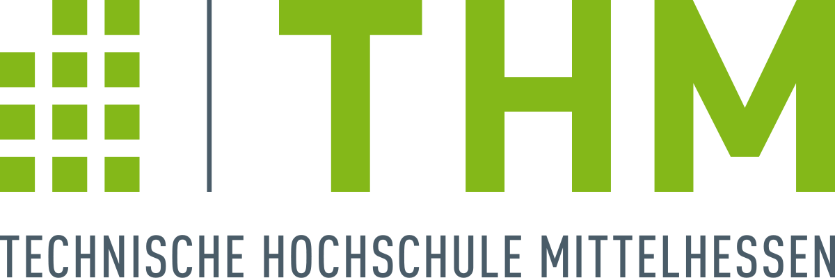 Professor, Supply Chain Management, Logistics, Industry 4.0 & Innovation Management, Technische Hochschule Mittelhessen