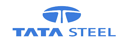 IT Director, Vendor Management, Tata Steel Europe
