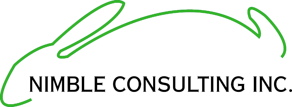 CEO | Nimble Consulting