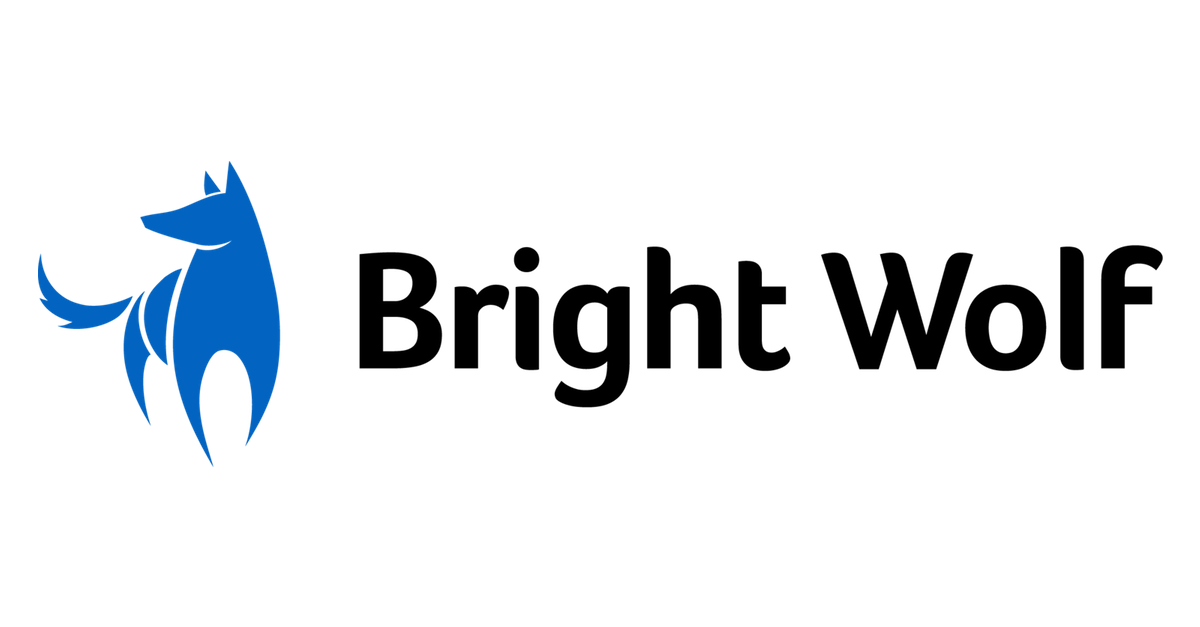 CEO | Bright Wolf